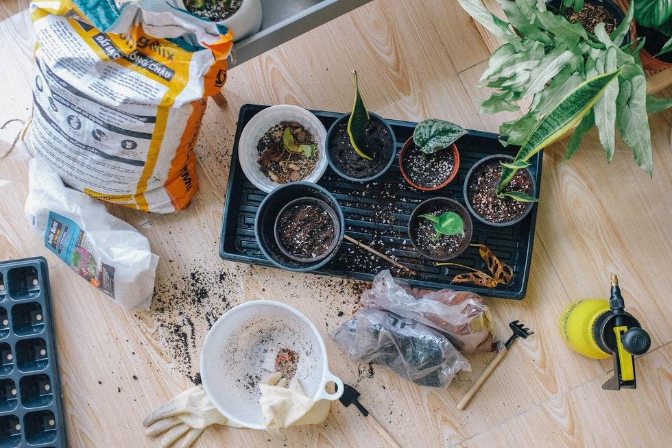 Page image gardening resources - Gardening Resources
